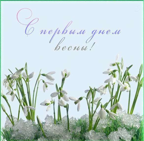 Картинка сегодня первый день весны