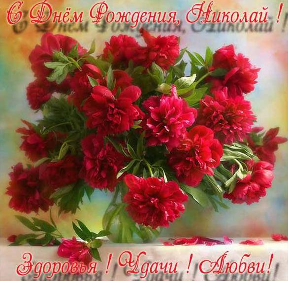 Бесплатная красивая открытка с днем рождения Николай