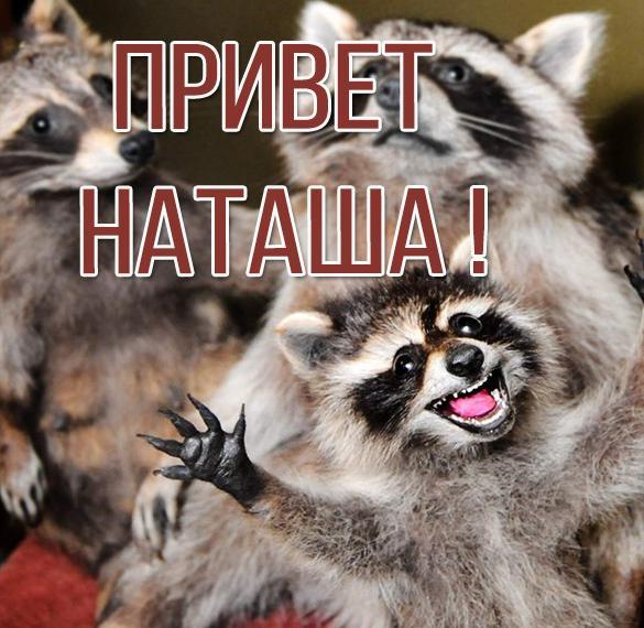 Смешная картинка привет Наташа