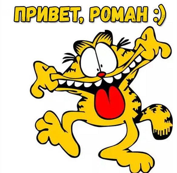 Смешная картинка привет Роман