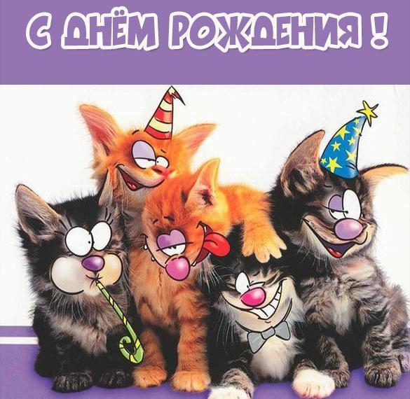 Веселая электронная открытка на день рождения