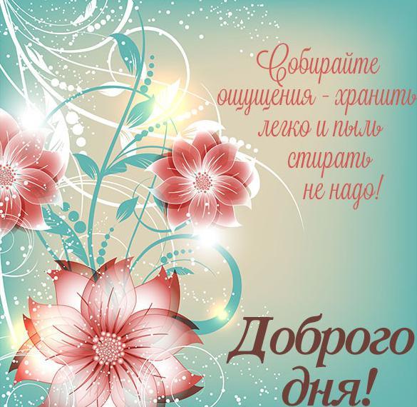 Виртуальная открытка доброго дня