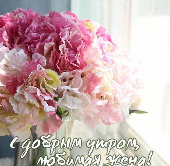 Виртуальная открытка с добрым утром любимая жена