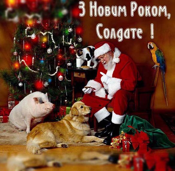 Поздравление с Новым Годом солдат в украинской открытке