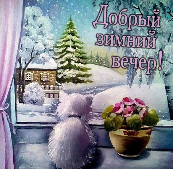 Зимняя картинка добрый зимний вечер